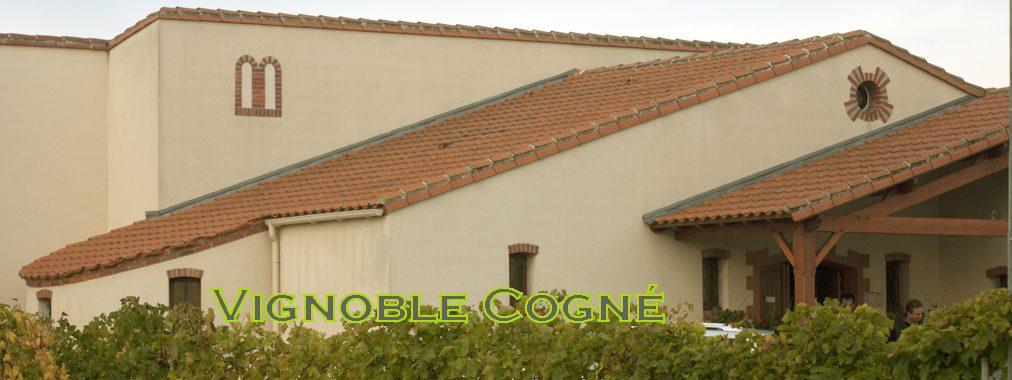 Vignoble Cogné